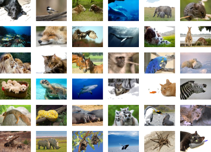 All iStockphoto images used in image rotator