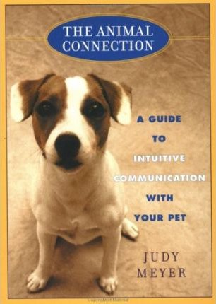 The Animal Connection: A Guide to Intuitive Communication with Your Pet by Judy Meyer